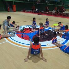 东城南城哪里有比较好的少儿篮球培训?