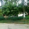 花園草木護欄