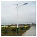 灯杆造型灯灯杆造型灯灯杆地笼地脚电池光板控制器