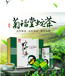 蛇胆茶专利产品蛇茶菊福堂蛇胆养生茶招商