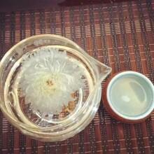 大朵菊花茶图片