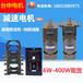 臺申電機微型低速永磁同步交流電機慢速正反轉小馬達220V齒輪減速電動機