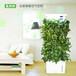 氧妈妈办公室家庭除甲醛雾霾空气净化加湿制氧植物智能控制