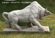 福建拓荒牛石雕,校园摆放牛石雕的意义,垦荒牛石雕