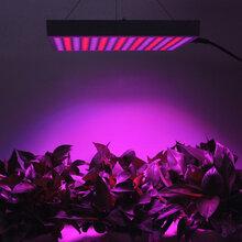 led植物生长灯图片