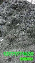 苏州园区工业垃圾处理处置清理