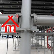 房建内架地铁桥梁市政路桥施工用具脚手架图片