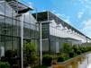 大棚建設-溫室大棚建設-蔬菜大棚建設-溫室工程