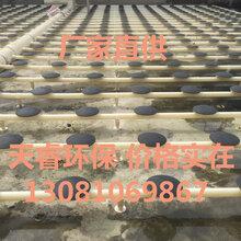 安徽芜湖曝气生物滤池曝气头曝气管价格实在找石家庄天睿环保