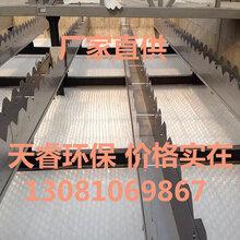 供应安徽蚌埠水厂斜管填料沉淀池新建改造升级石家庄天睿环保