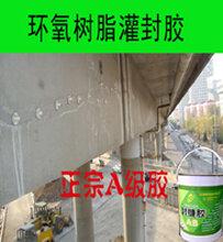湖南湘潭混凝土裂縫修補膠圖片