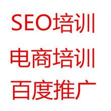 seo排名优化培训淘宝seo的概念专业百度霸屏惠州