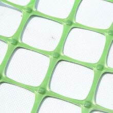 雙向塑料土工格柵雙向塑料土工格柵批發采購圖片