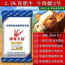 泽牧久远牛得膘提高育肥速度提高牛肉档次月增重100斤图片