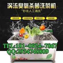 渭南洗菜机商用洗菜机图片