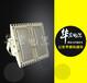 高效节能LED防爆泛光灯LED防爆路灯头多少钱