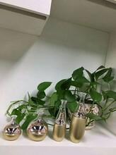廣州怡嘉修護嫩膚霜,美白修復,貼牌OEM-廣州怡嘉生物科技圖片