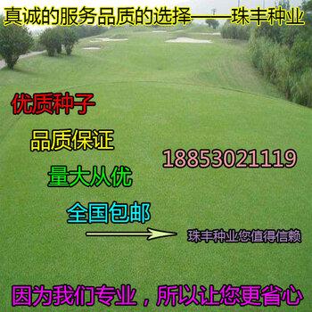 郓城珠丰园林种业有限公司