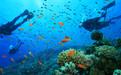马尔代夫浮潜怎么样浮潜岛屿攻略
