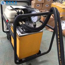 汽油液压泵超高压双回路汽油液压泵汽油液压机液压泵站液压驱动泵