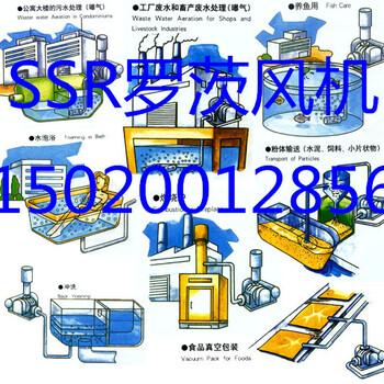 SSR罗茨风机,三叶罗茨风鼓风机,章晃罗茨风机江苏办事SSR200型号处