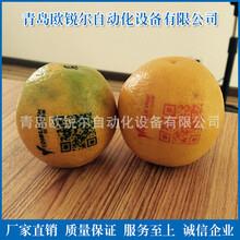 厂家直销油墨移印机苹果印刷机苹果印字机艺术苹果设备