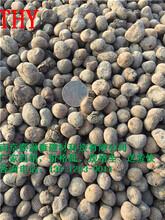 南京一立方陶粒多少钱南京陶粒厂图片