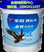 水性木器漆好品牌广东专业厂家直销招商代理加盟