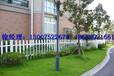 小区庭院塑钢PVC塑钢护栏体育场护栏PVC护栏