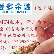爱多金融官网ADDEX外汇怎么开户平台可靠吗?