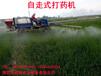 农田稻田多功能高压喷药机自走式打药机