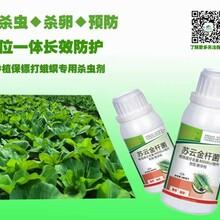 蔬菜大棚农药杀虫剂哪种好?首选苏云金杆菌高效杀虫剂强力高效杀虫剂