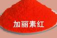 饲料级加丽素红色素天然养殖专用