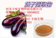 茄子提取物抗氧化劑茄子提取物廠家直銷茄子提取物批發零售