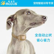 宠物训导用品_宠物犬训练用品_宠物训练用品批发-莫迪思宠物智能用品