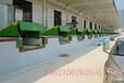 青岛德泰曼,厂家直销,定制,固定登车桥,月台一体,完美的质量保障体系