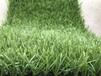 厂家直销幼儿园人造草坪绿化装饰塑料草坪