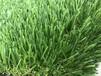 优质人工草坪厂家仿真草坪地毯草幼儿园阳台假草皮加密绿胶PE人造草坪