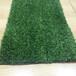仿真人造草坪地毯幼儿园草坪婚礼展览运动草坪人工塑料假草坪批发