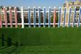 仿真草坪人造草坪厂家草皮足球场幼儿园绿植工程草坪绿色地毯门垫
