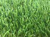 人造草坪高仿真草坪塑料人工假草皮加密地毯楼顶阳台幼儿园户外
