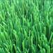 厂家直销人造仿真草坪地毯草幼儿园彩虹跑道人工塑料假草皮批发
