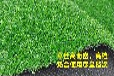仿真塑料幼儿园草坪彩虹跑道人造草坪彩色人工草皮草坪地毯厂家