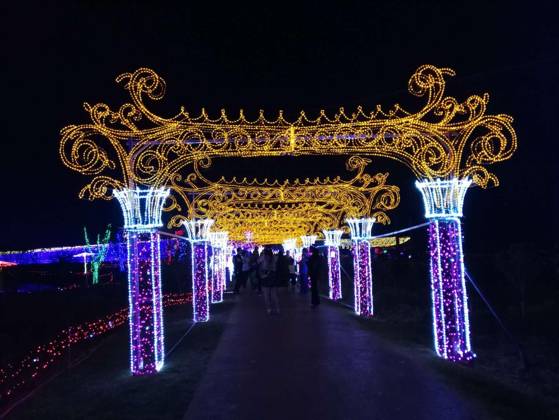 灯光展制作厂家徐州龙君专业灯光秀制作厂家,专业设计各种led唯美造型图片