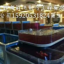 广州荔湾土建海鲜池定做公司,广州荔湾玻璃海鲜池设计公司