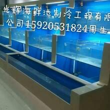 供应海鲜池,超市海鲜池,酒店海鲜池
