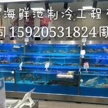 广州订做海鲜鱼缸,广州附近海鲜池订做