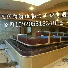 广州海鲜池公司定做海鲜玻璃鱼缸养殖咸水鱼缸免费调制