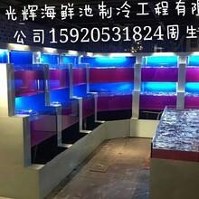 广州海珠定做玻璃海鲜池,广州海鲜制冷鱼池公司,海鲜池专业设计