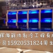 广州海鲜池,广州酒店餐饮鱼池订做,广州超市商场海鲜鱼池订做